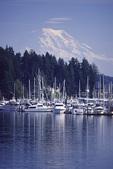 Mt. Rainier from Gig Harbor, Washington