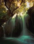 The 'Emerald Forest', a hidden area of Havasu Creek, atop Navajo Falls, Havasupai Reservation, Arizona