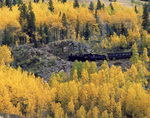 The Cumbres &amp; Toltec Railroad climbs through aspens, en route from Antonito to Chama, Colorado