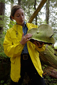 a naturalist guide shows an example of 'bears bread' fungus, in a temperate rainforest near Ketchikan, Alaska