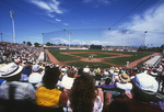 Spring training baseball at Scottsdale Stadium, Arizona