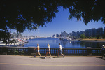 Walking in Stanley Park, Coal Harbour View, Vancouver, British Columbia, Canada