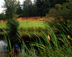Water hazard at Hole #2, Olympic View Golf Course, Victoria, British Columbia, Canada