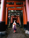17 year-old maiko, (apprentice geisha) at Fushimi, Kyoto, Japan