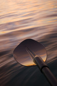 Kayak paddle reflecting sunset color, Sea of Cortez, Baja California, Mexico