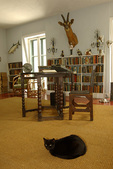 A black cat watches over Hemingway's writing room, Ernest Hemingway Home, Key West, Florida