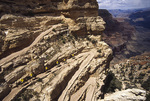 A mule train ascends the South Kaibab Trail, from Phantom Ranch, Grand Canyon National Park, Arizona