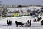 Sleigh rides are popular at the Winter Carnaval, Quebec City, Canada