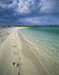 The beach on Isla Coronado, Baja California Sur, Mexico