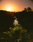 A spring sun sets over the palms lining the Mulege River, Mulege, Baja California Sur, Mexico