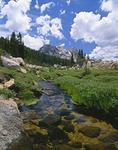 Rancheria Creek, Kerrick Meadow, Yosemite National Park, California