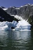 An iceberg slowly melts in Tracy Arm, south of Juneau, Alaska