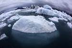 Icebergs in the forebay of the Columbia Glacier, Prince William Sound, Alaska