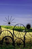 A tractor wheel fence on the Dahmen Farm, Uniontown, Palouse region of Eastern Washington