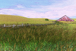 A red barn surrounded by wheat in the Palouse region of Eastern Washington