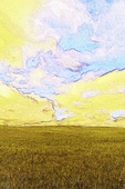 A wheatfield and summer sky in the Palouse, Eastern Washington