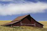 Red barn in the field, Palouse, Eastern Washington