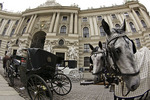 Horses and carriages await riders in Vienna, Austria