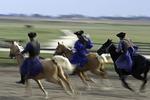 Hungarian cowboys ride on the Hungarian Puzta,Kalocsa, Hungary