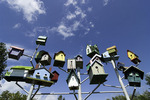 Birdhouses at Red Oak II, off old Route 66, Carthage, Missouri