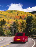 An autumn drive thru the aspen forests of the southern Sanngre de Cristo Mountains, outside Santa Fe, New Mexico