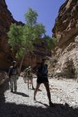 Hikers en route to Supai, from Hualapai Hilltop, Havasupai Reservation, Arizona
