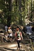 Hiking in Julie Phieffer Burns State Park, Big Sur, Monterey County, California