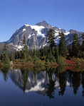 Mt. Skuksan in autumn, reflected in Picture Lake, Cascade Range, Washington
