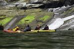 Kayaking in Walker Cove, Misty Fiords National Monument, Alaska