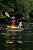 Kayaking in Yes Bay, Inside Passage, Alaska