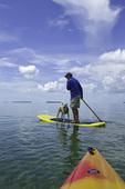 Paddleboarding and kayaking in the mangroves off Big Pine Key, Florida Keys, Florida