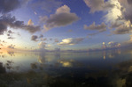 Sunrise from a kayak, off the Pines & Palms Resort, Islamorada, Florida Keys, Florida