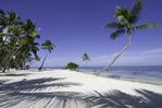 The lovely beach at the Moorings Village, Islamorada, Florida Keys, Florida