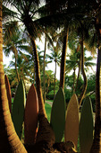 Surfboards and palm trees at sunset outside the Morada Bay Cafe, Islamorada, Florida Keys