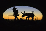 Lost Dutchman prospector and burro at sunset, symbol of Apache Junction, Arizona
