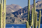 Boating on Saguaro Lake, Arizona