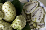 Noni fruit at processing plant, Pahoa, Hawaii