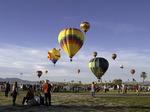 Balloons ascend at the Havasu Balloon Fiesta, Arizona