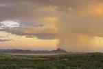 Monsoon rain falls near sunset, Lake Valley, New Mexico