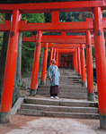 A priest pauses before walking up thru the torii to his temple, Izushi, Japan