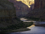 Sunrise light reflects on the Colorado River at Nankoweap, Grand Canyon National Park, Arizona