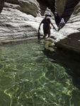Hikers wade through cool green pools in Matkatamiba Canyon, Grand Canyon National Park, Arizona
