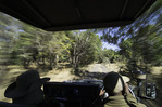Riding to Zungalila bush camp in South Luangwa National Park, Zambia, Africa