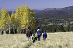 Family hiking to aspens in autumn, San Francisco Peaks, Flagstaff, Arizona
