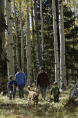 Family hiking through aspens in autumn, San Francisco Peaks, Flagstaff, Arizona