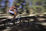 Mountain biking south of the San Francisco Peaks, Flagstaff, Arizona