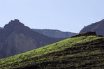 Monsoon rains green up the hillsides near Cardenas Canyon, below the East Rim, Grand Canyon NP, Arizona