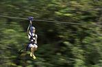Ziplining near Palau Falls, near Hilo, Hawaii