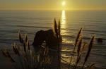 Sunset over sea arch, north Mendocino County coast, California