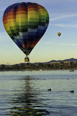 Balloons over Lake Havasu, Lake Havasu Balloon Fiesta, Year 5, Arizona